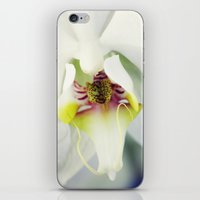 orchid iPhone & iPod Skins featuring Orchid by Falko Follert Art-FF77