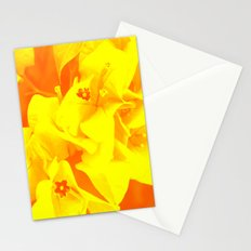 Ali orange Stationery Cards