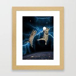 CAT FIGHT  Framed Art Print