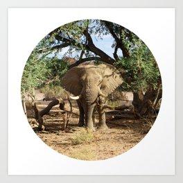 Voortrekker the Elephant Art Print