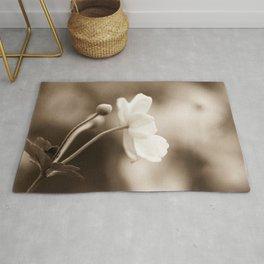 Anemone Portrait #2 - Flower Photography Rug