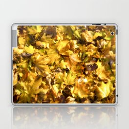 Autumnal Colours Laptop & iPad Skin