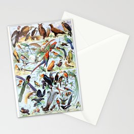 Adolphe Millot - Oiseaux pour tous A - French vintage poster Stationery Cards