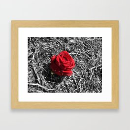 in a world of gray Framed Art Print