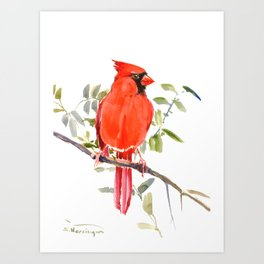 Cardinal Bird homde decor Art Print