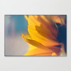 Sunny Day Canvas Print