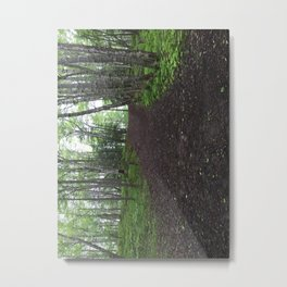 Where does it take you? Metal Print
