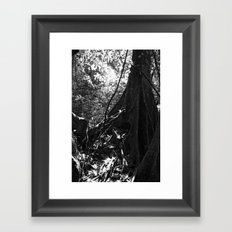 Fundation No.1 Framed Art Print