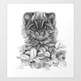 Asian Leopard Cat Cub G096 Art Print