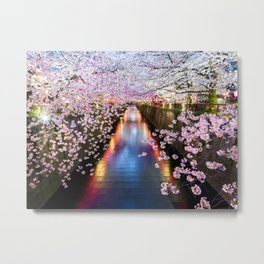 Cherry Blossom in pink   Japan Nakameguro River Metal Print