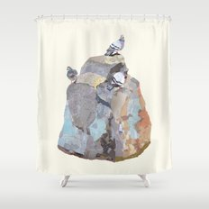The Pigeon on a Rock Shower Curtain