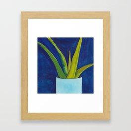 Aloe On Blue Framed Art Print