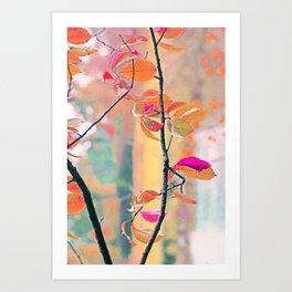 New Autumn Colours  Art Print