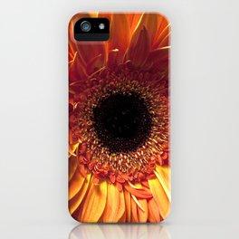 Gerberas iPhone Case