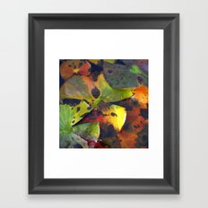 autumn lily pads IV Framed Art Print