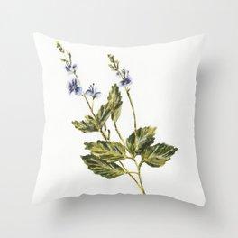 Veronica chamaedrys Throw Pillow