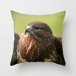Common Buzzard II Throw Pillow