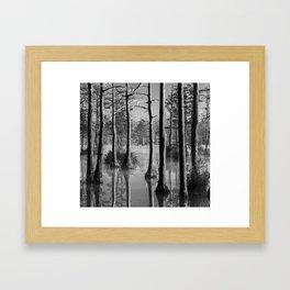 Adams Mill Pond 54 B&W Framed Art Print