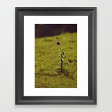 Lonely one Framed Art Print