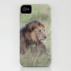 Lion king Slim Case iPhone (4, 4s)