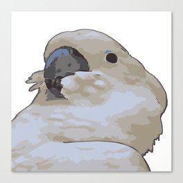 Chubby Blue Eyed Cockatoo Cacatua Ophthalmica Canvas Print