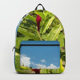 Shrine to Our Lady of Fatima  The Miracle Church  Wailuanui Wailua Maui Hawaii Backpack