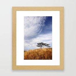 Rosario Tree Framed Art Print