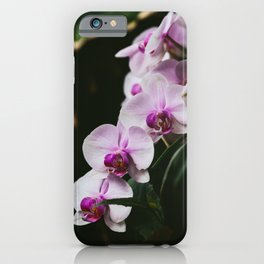 White & Purple Orchids iPhone Case
