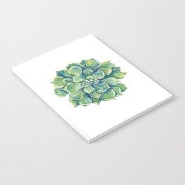 November Succulents Notebook