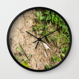 Surfacing, Killing Fields, Cambodia Wall Clock