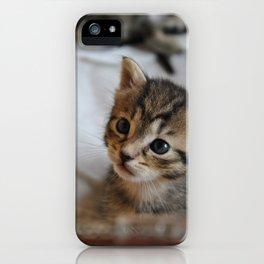 Cat look iPhone Case