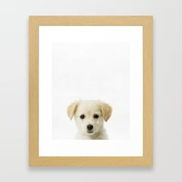 Puppy, Baby, Animal, ZOO, Nursery, Minimal, Modern, Wall art Art Print Framed Art Print