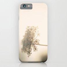 Fragile Slim Case iPhone 6s