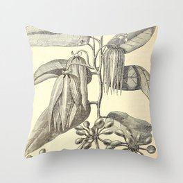 Cananga odorata Throw Pillow