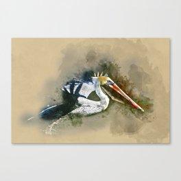 Watercolor Brown Pelican Canvas Print