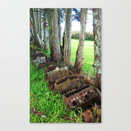 The New Generation Canvas Print