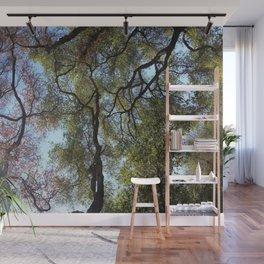 Dos Picos Ramona Oak Tree Wall Mural