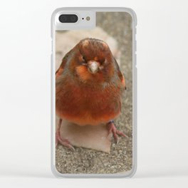 Cute runaway canary bird Clear iPhone Case