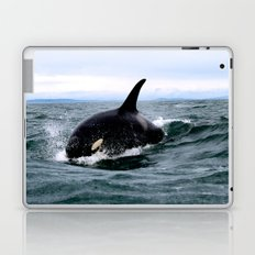 Willy Laptop & iPad Skin