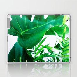 Tropical Display Laptop & iPad Skin