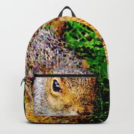 The many faces of Squirrel 3 Backpack