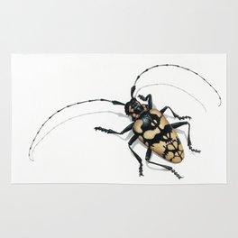 Longhorn Beetle Rug