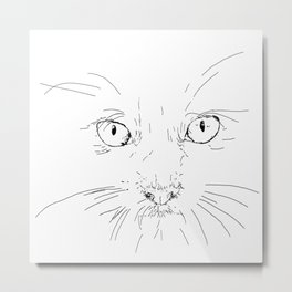 cat's eyes, drawing Metal Print