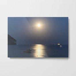 blue moon 4571 Metal Print