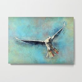 gull bird Metal Print