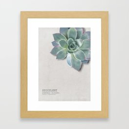 Succulent botanic print grey Framed Art Print