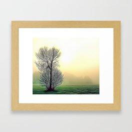 Misty View Airbrush Artwork Framed Art Print