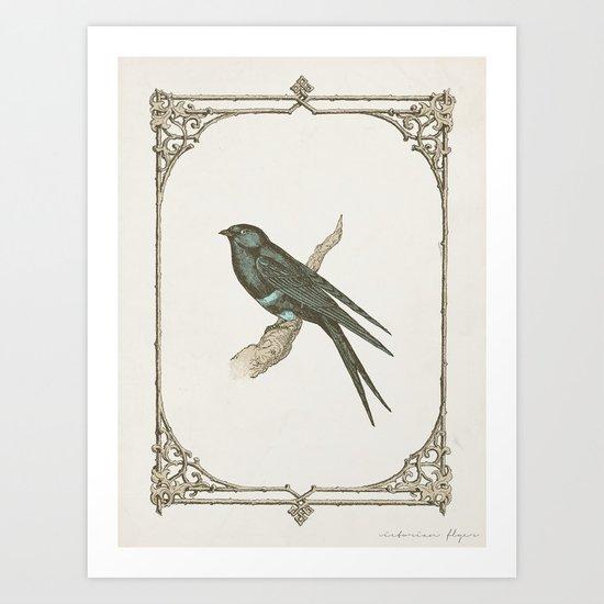 A Victorian Bird Art Print