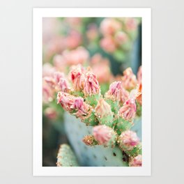 Prickly Pear Glitter Cactus III Art Print
