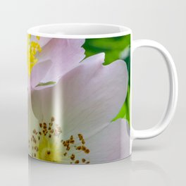 Group of flowers with light petals and yellow and brown pistils Coffee Mug
